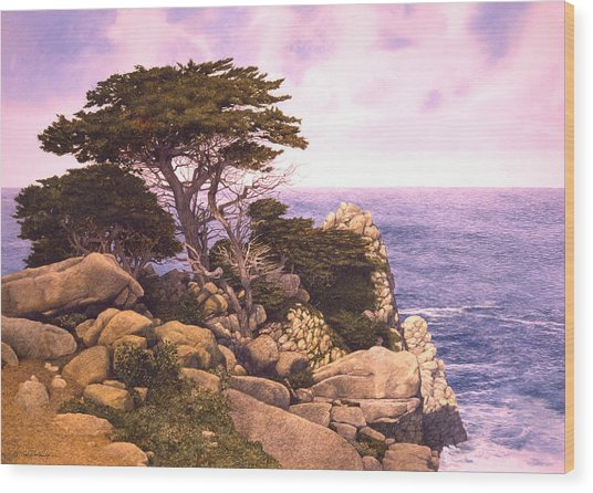 Coast At Lobos Wood Print