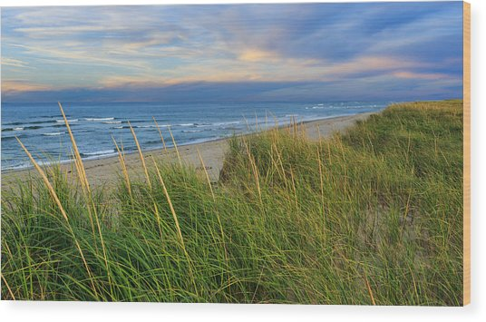 Coast Guard Beach Cape Cod Wood Print