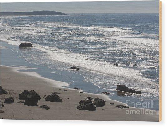 Coast Near Bodega Bay - 355 Wood Print by Stephen Parker