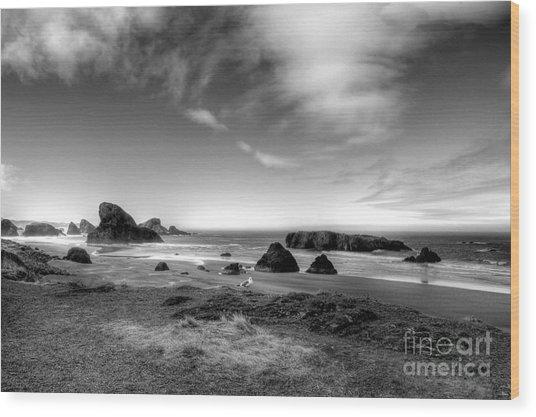 Coast Of Dreams 6 Bw Wood Print by Mel Steinhauer