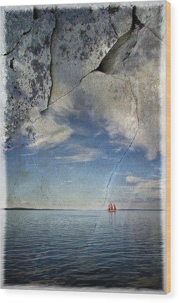 Coast Of Maine Wood Print