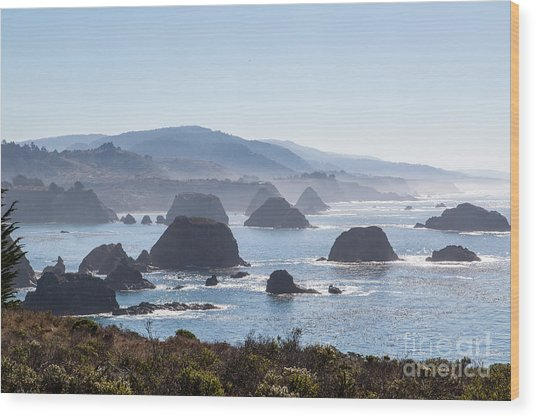 Coastal California - 474 Wood Print by Stephen Parker