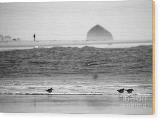 Coastal Stroll Wood Print