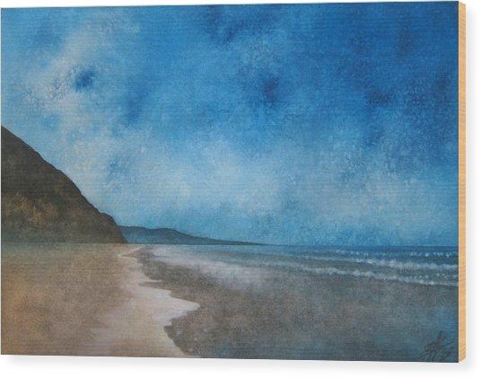 Coastal Walk At Torrey Pines Wood Print