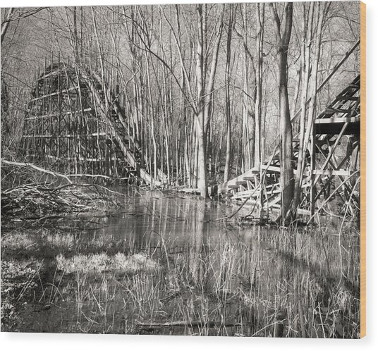 Coaster Reflections Wood Print