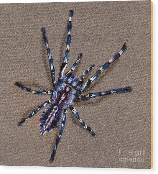 Cobalt Blue Tarantula Wood Print