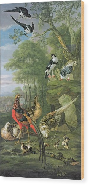 Cock Pheasant Hen Pheasant And Chicks And Other Birds In A Classical Landscape Wood Print