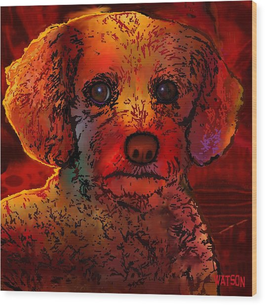 Cockapoo Dog Wood Print