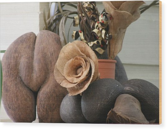 Wood Print featuring the photograph Coco Du Mer by Debbie Cundy