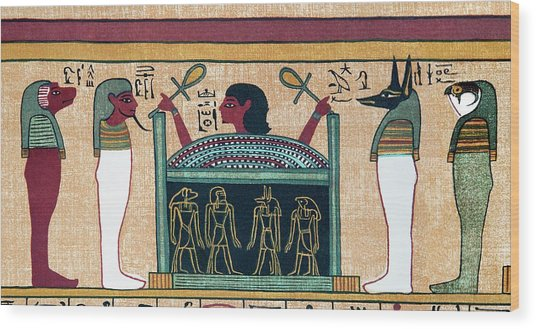 Coffin Of Osiris Wood Print by Sheila Terry/science Photo Library