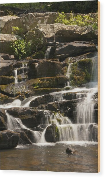 Coker Creek Cascades Wood Print