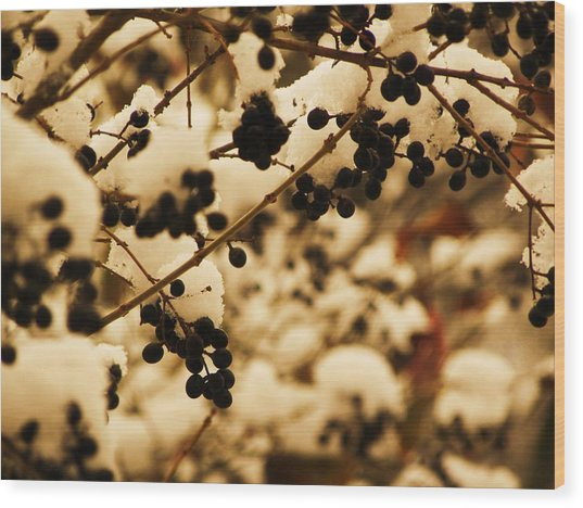 Cold Berries Wood Print by Christian Rooney