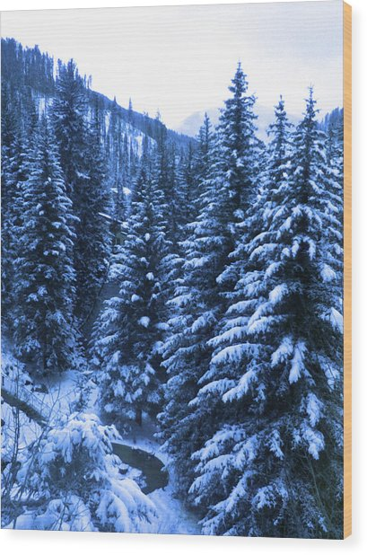 Cold In Colorado Wood Print