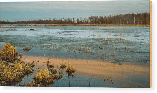 Cold Lake Wood Print by Bruno Santos