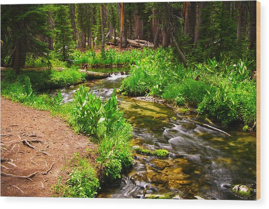Coldwater Creek By Frank Lee Hawkins Wood Print