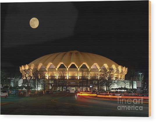 Coliseum Night With Full Moon Wood Print