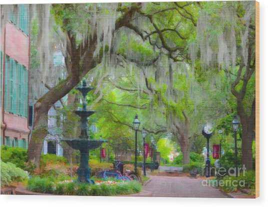 College Of Charleston Wood Print