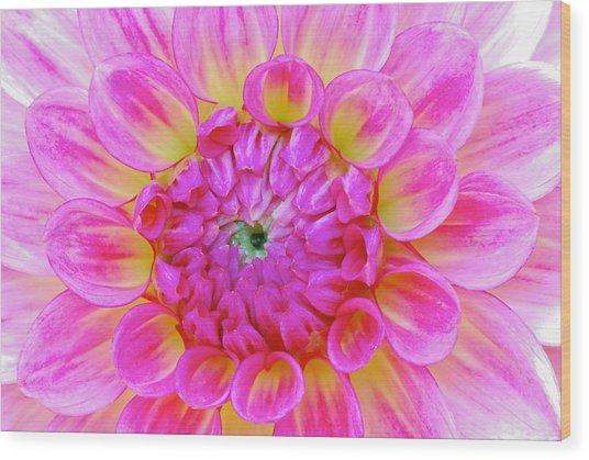 Color Burst Wood Print