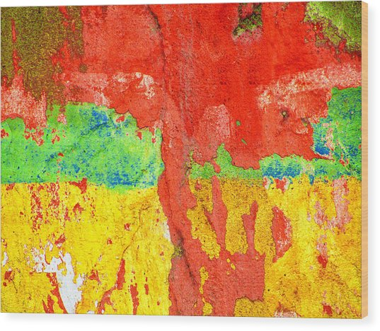 Color Splash  Wood Print