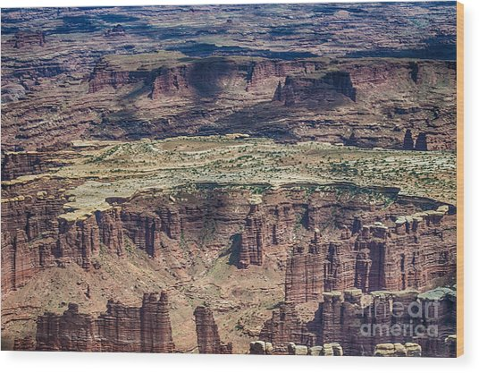 Color Variety At Canyon Lands Wood Print