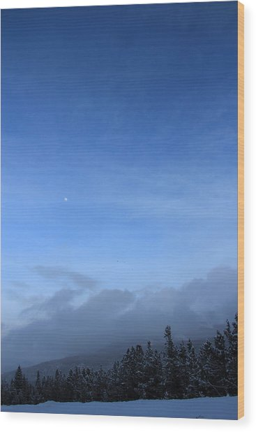 Colorado Blue 1 Wood Print