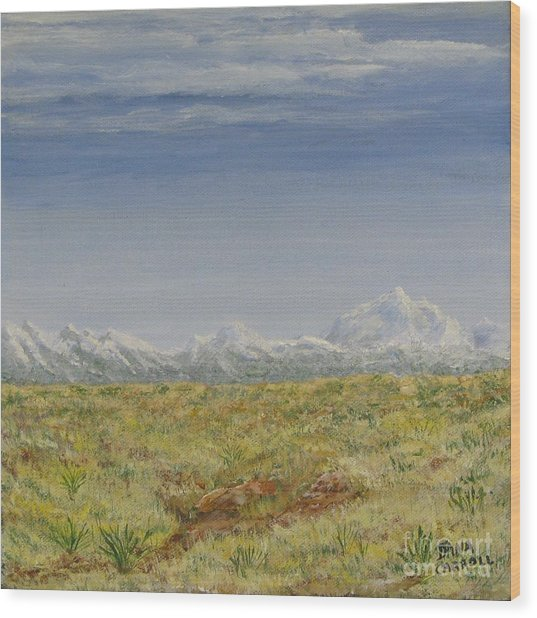 Colorado Eastern Plains Wood Print by Dana Carroll