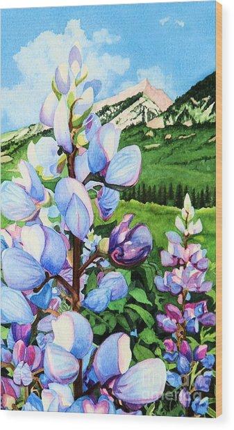 Colorado Summer Blues Close-up Wood Print