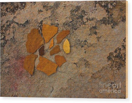Colorado Sandstone Wood Print