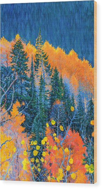 Colorado Trees At Fall Wood Print