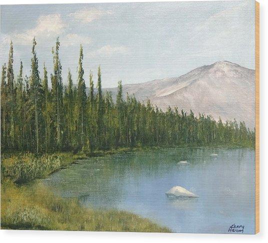 Colorado View Wood Print