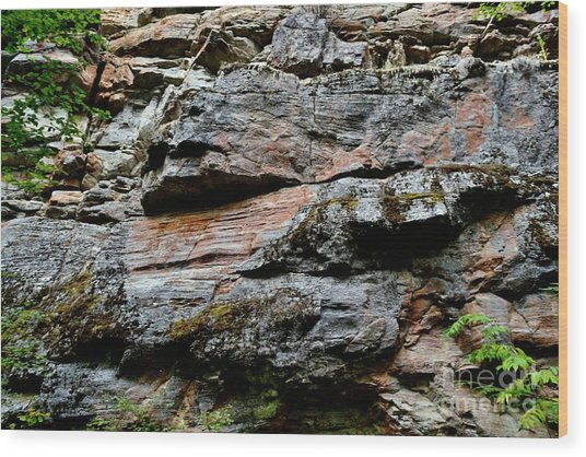 Colored Rock Face Wood Print by Phil Dionne