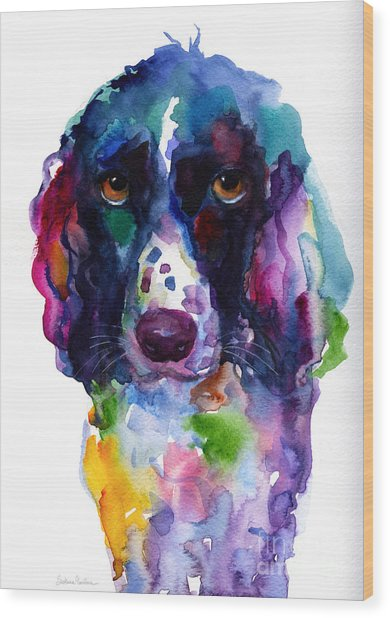 Colorful English Springer Setter Spaniel Dog Portrait Art Wood Print