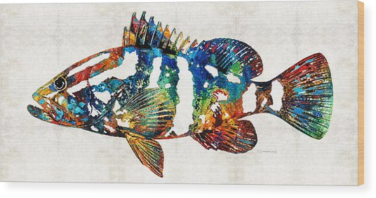 Colorful Grouper 2 Art Fish By Sharon Cummings Wood Print