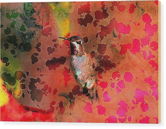 Colorful Hummingbird Wood Print