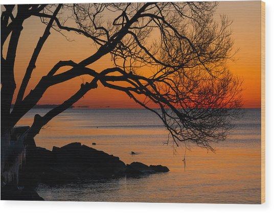 Colorful Quiet Sunrise On Lake Ontario In Toronto Wood Print