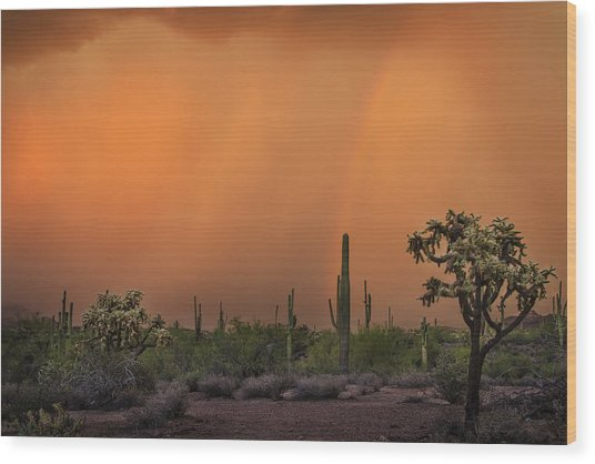 Colorful Rainbow With Dust Storm At Lost Dutchman State Park  Wood Print