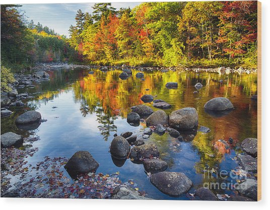 Colorful Trees Along The Swift River Wood Print by George Oze