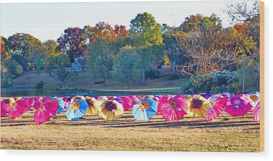 Colorful Umbrellas At The Park Wood Print