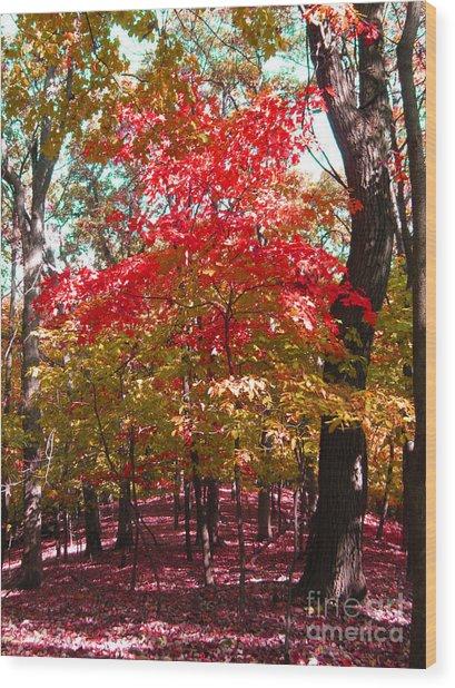 Colorful Woodland Wood Print