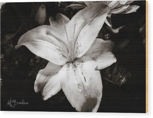 Colorless Wood Print by Lori Breedlove