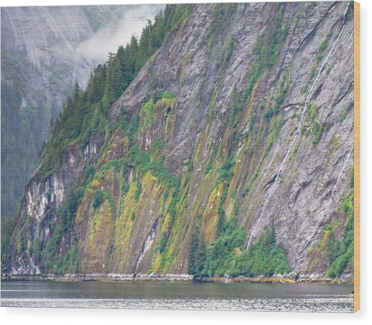 Colors Of Alaska - Misty Fjords Wood Print