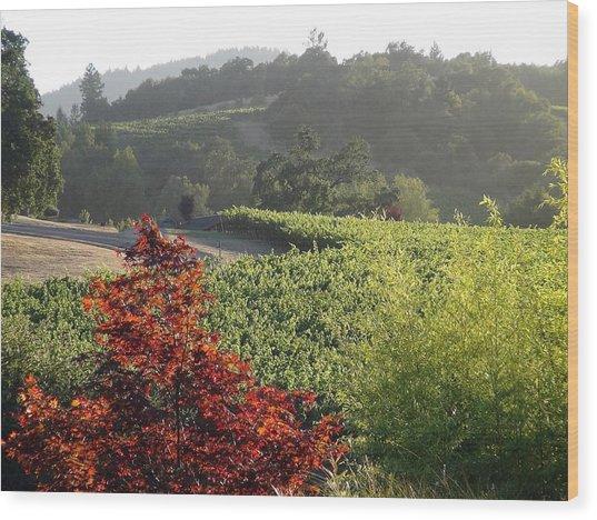Colors Of Cali Wood Print