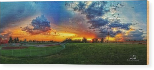 Colors Of Shadle Park Wood Print by Dan Quam