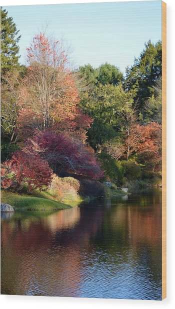 Colors Of Still Waters Glow Wood Print by Lena Hatch