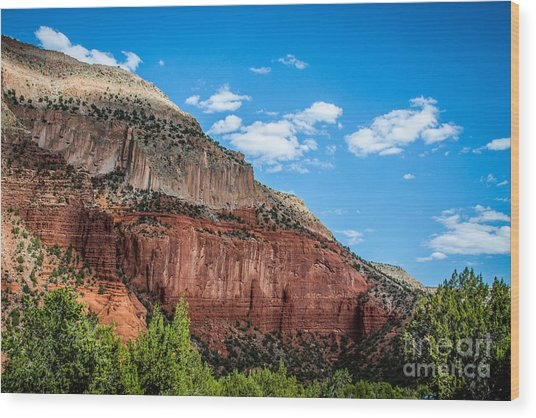 Colors Of The Jemez Wood Print