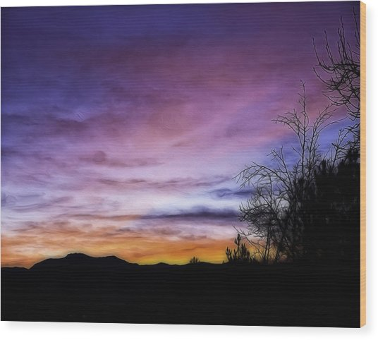 Colors Of The Night Wood Print by Nancy Marie Ricketts