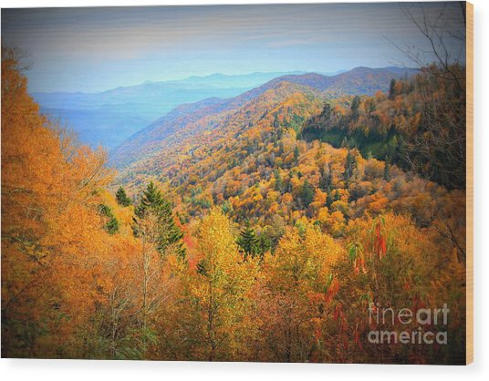 Colors Of The Smokies Wood Print