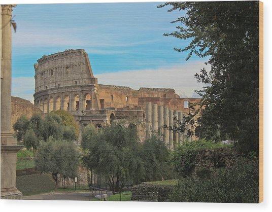 Colosseum Afar Wood Print