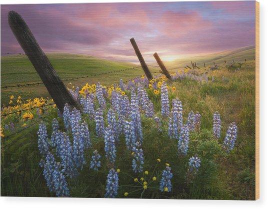 Columbia Hills Sunset Wood Print