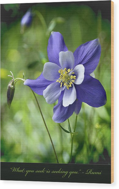 Columbine Card  Wood Print